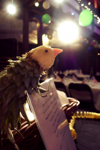 Kanaria teemajuhlat